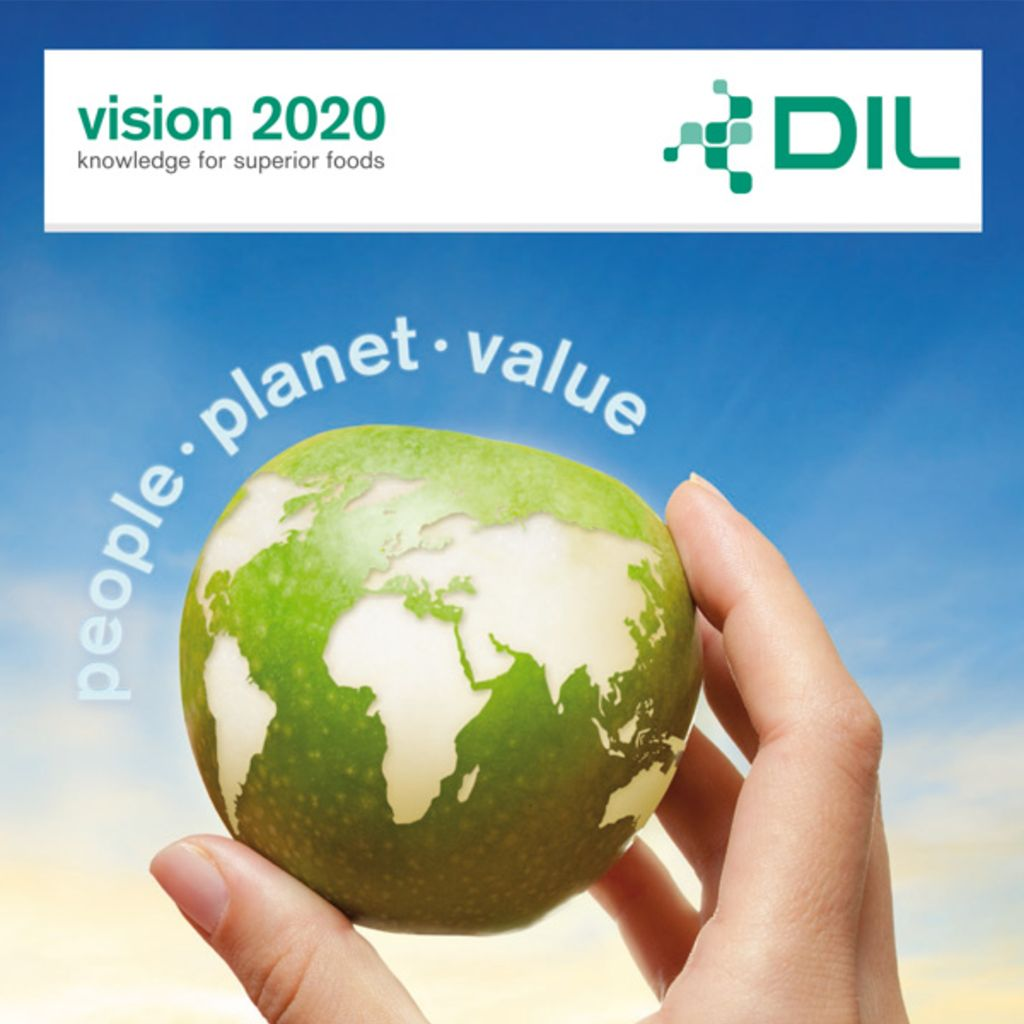 DIL Vision 2020