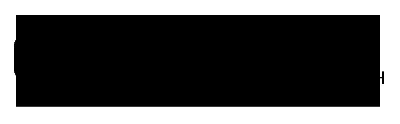 giz_logo_01.png